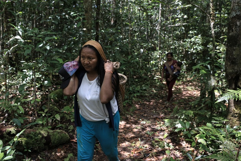 The photograph above shows the article's author, Francineia Bitencourt Fontes Baniwa, walking through the forest.
