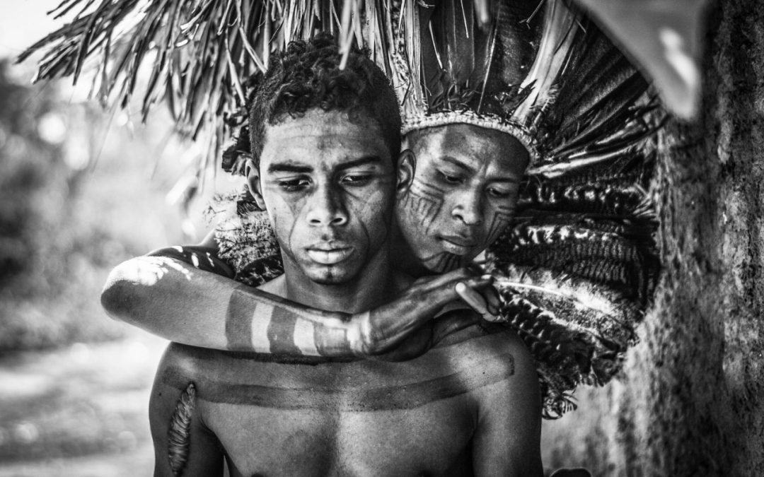 """""""Véxoa: We Know"""" and Indigenous Artists in Brazilian Art"""
