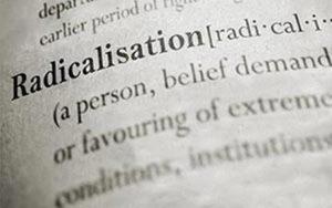 Conceptualising radicalisation