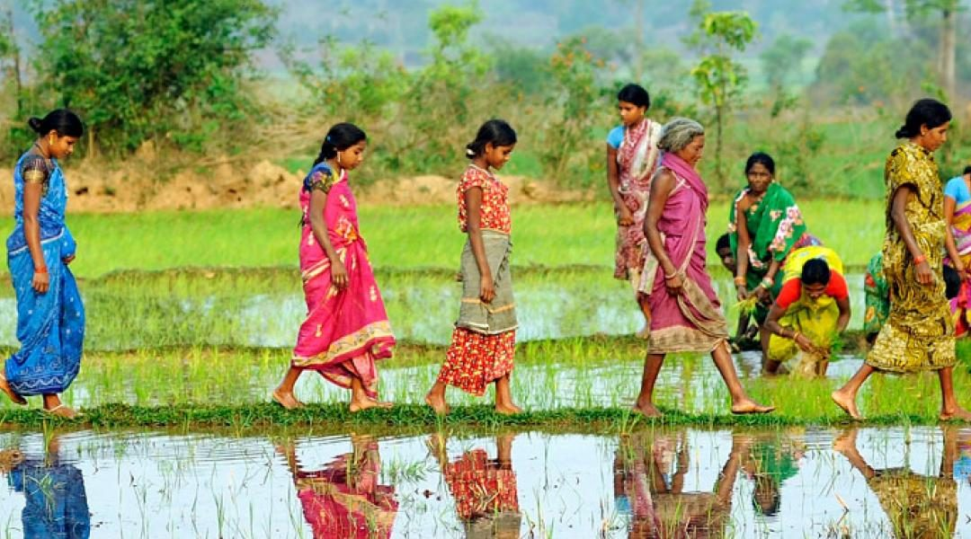 Why Gender Equality Needs to be at the Forefront of Climate-Related Decisions