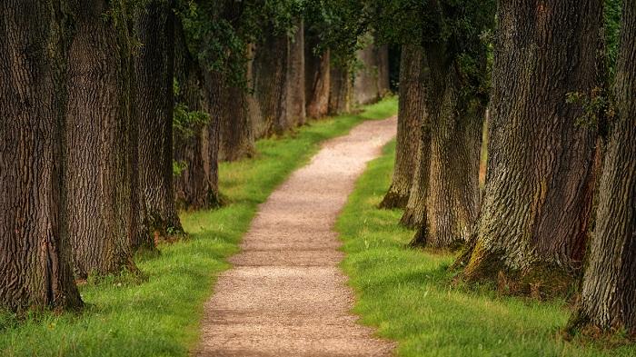 Changes to UKRI Pathways to Impact