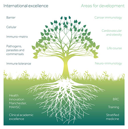 Immunology tree