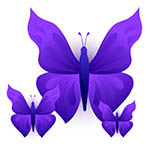 Three purple butterflies.