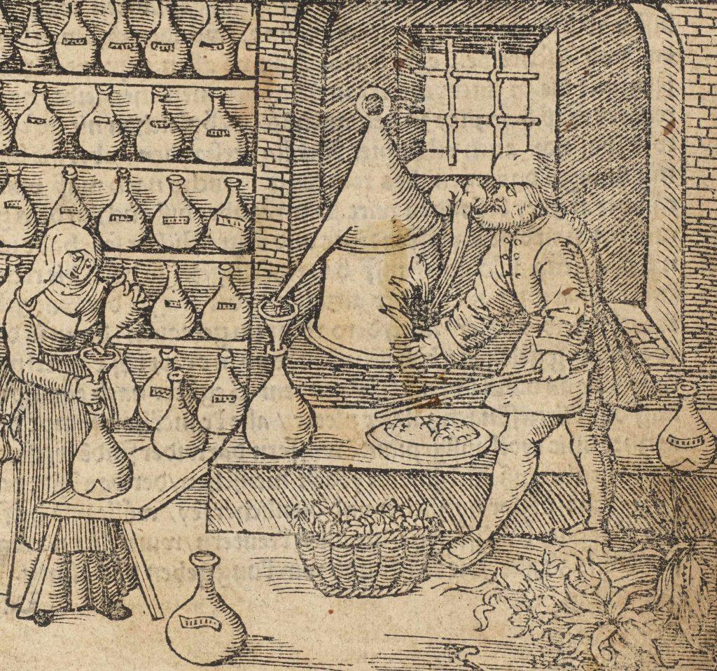 Fig.recipes