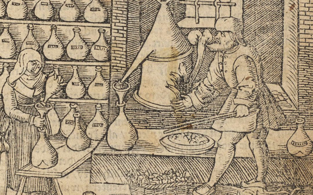 Funding for Scientific Research on Early Modern German Haircare Recipes