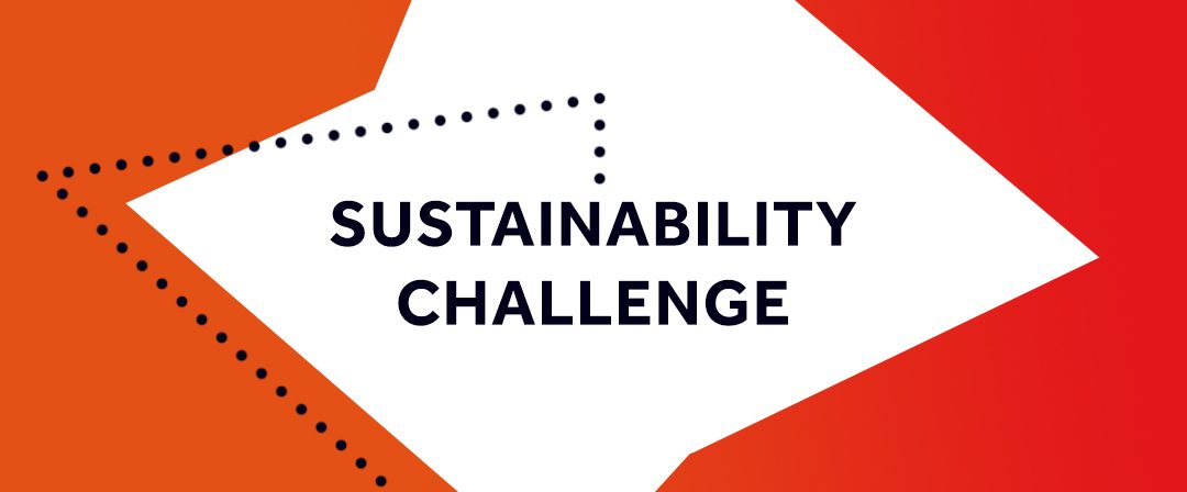 The Sustainability Challenge: what is it and what will you get out of it?